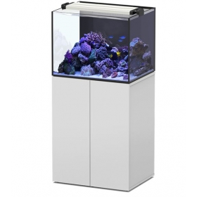 AquaView 65- Acuario de Diseño Aquatlantis